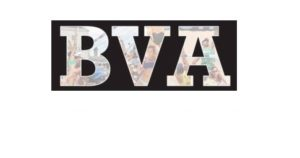 Πελατολόγιο Belma - BVA